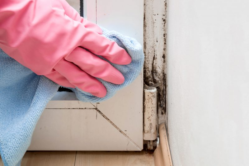 Effective ventilation can prevent condensation and mould in your home.
