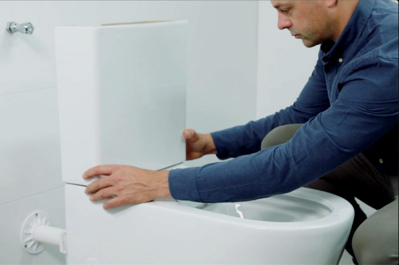 Milu Odourless toilet back-to-wall cutaway